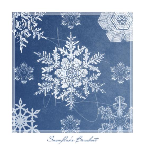 Sněhové vločky - brushe ke stažení