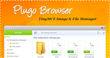 TinyMCE/CKEditor Image a File Manager